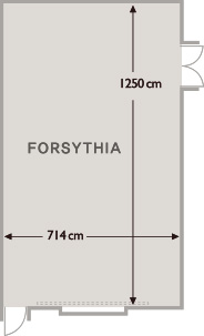 FLOOR PLAN – FORSYTHIA