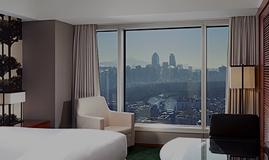 PARK VIEW ROOM